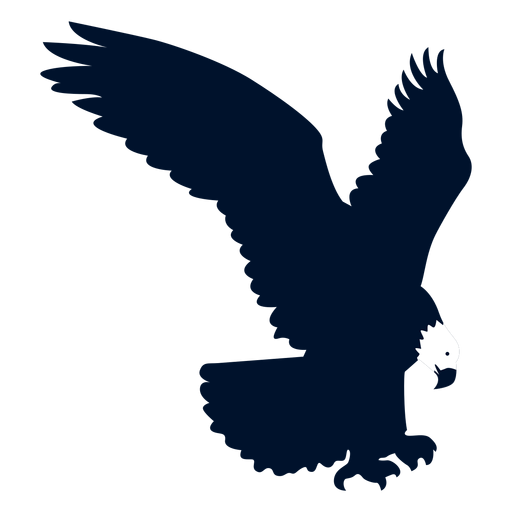 Eagle beak wing silhouette Transparent PNG