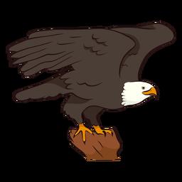 Ilustración de ala de águila