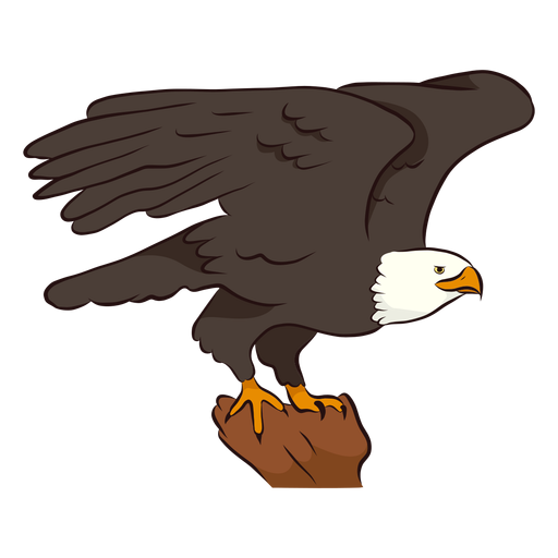 Ilustración de ala de águila Transparent PNG