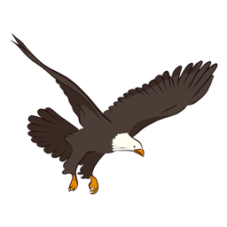 Eagle wing tail illustration