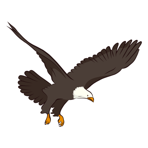 Eagle wing tail illustration Transparent PNG