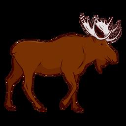 Ilustración de pezuña alce asta alce