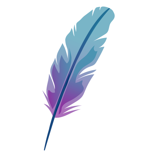 Feather illustration Transparent PNG