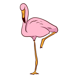 Flamingo beak illustration