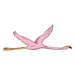 Flamingo wing illustration