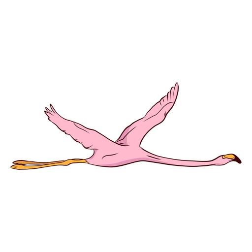 Flamingo wing illustration Transparent PNG