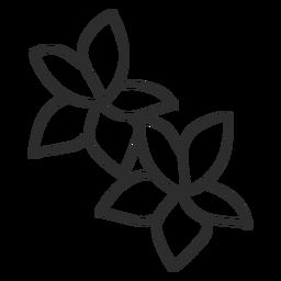 Flower petal leaf doodle stroke