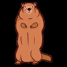 Marmota de porco à terra focinho ilustração de pele de cauda