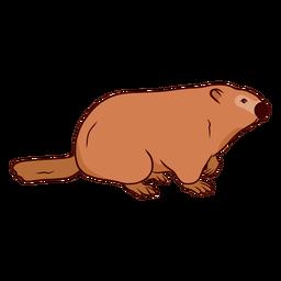 Ilustração de cauda de focinho de marmota de porco à terra