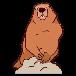 Ilustração do dente do focinho da marmota de porco à terra