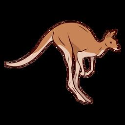 Ilustração de perna de cauda de canguru