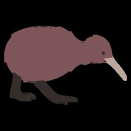 Kiwi beak leg flat