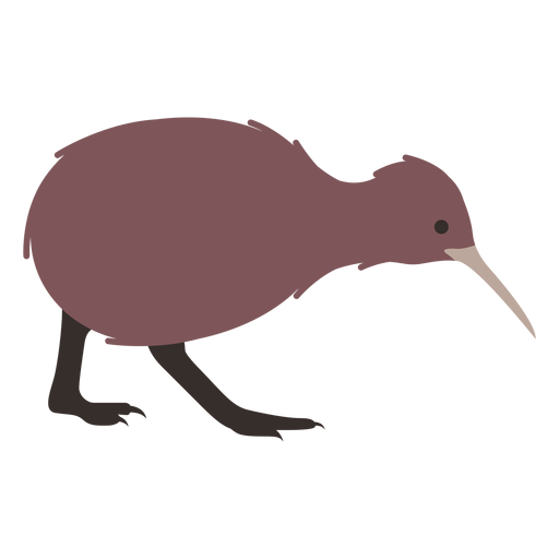 Pierna de pico de kiwi plana Transparent PNG