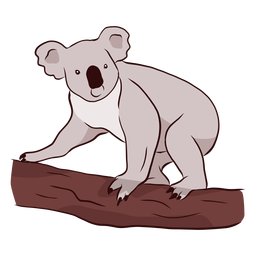 Koala ear leg nose branch illustration