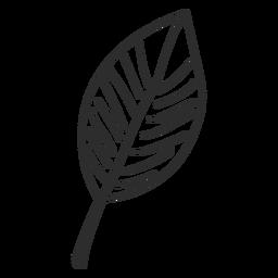 Esboço de folha
