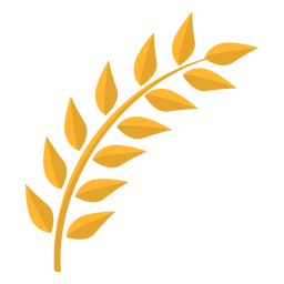 Leaf stem flat