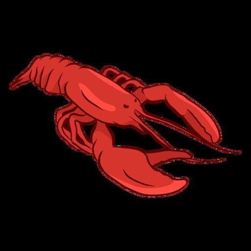 Ilustración de cola de garra de antena de langosta Transparent PNG
