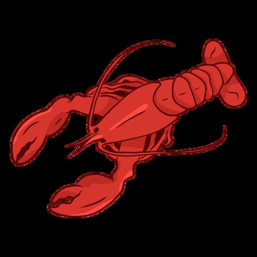 Ilustración de cola de antena de pinza de langosta Transparent PNG