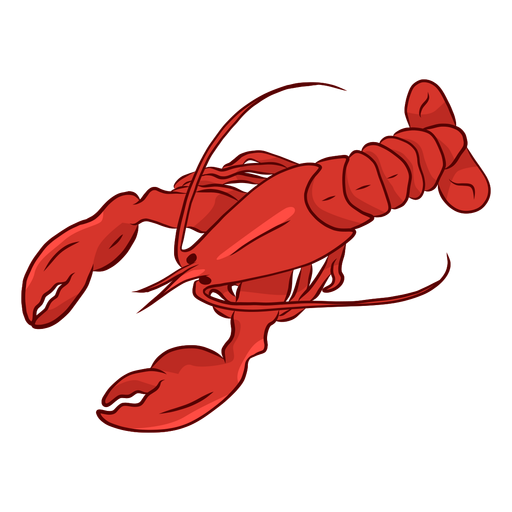 Lobster claw antenna tail illustration  Transparent PNG
