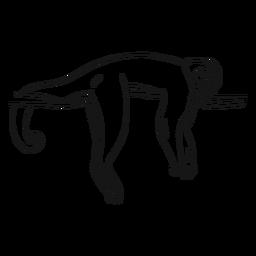 Bosquejo de rama de cola de pierna de capuchino de mono