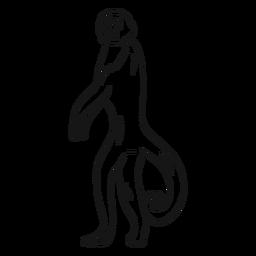 Affe Capuchin Bein Schwanz Skizze