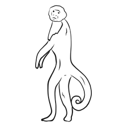 Esboço de rabo de perna de macaco-prego