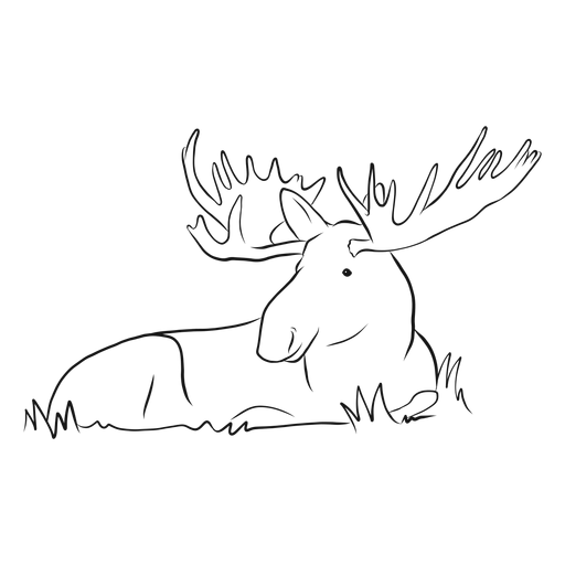 Moose elk antler grass sketch Transparent PNG