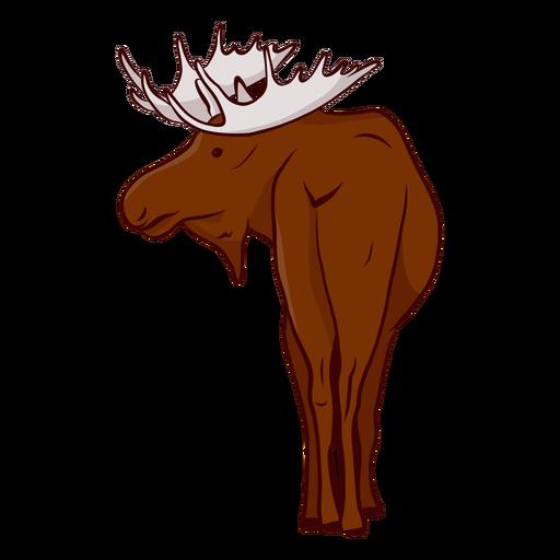 Moose elk antler illustration Transparent PNG