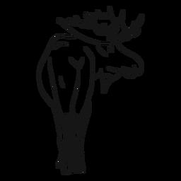 Moose elk antler sketch