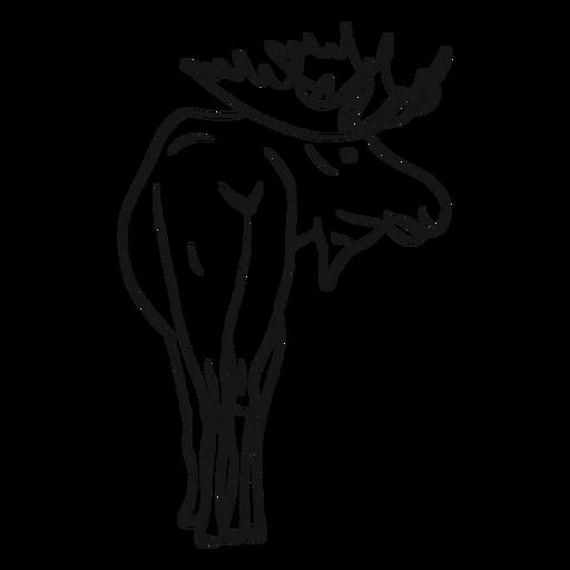 Moose elk antler sketch Transparent PNG