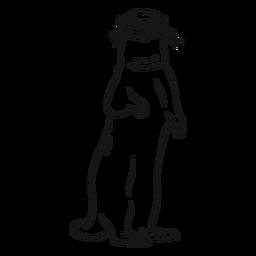 Esboço da perna focinho da lontra