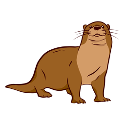 Otter muzzle leg tail whisker illustration