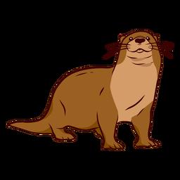 Otter muzzle leg tail whisker illustration
