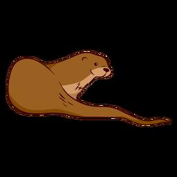 Ilustración de la cola del hocico de la nutria