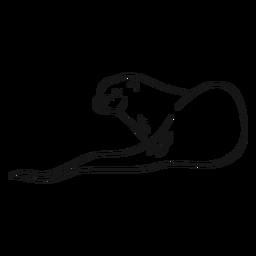 Dibujo de la cola del hocico de la nutria