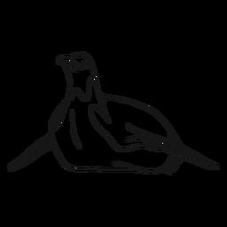 Esbozo de pingüino ala pico de rastreo