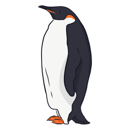 Penguin wing beak tail fat illustration