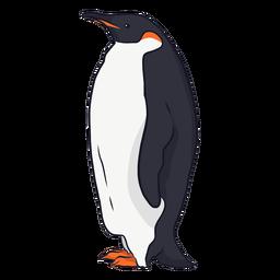 Pingüino ala pico cola grasa ilustración