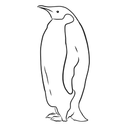 Esboço gordo da cauda do bico da asa do pinguim