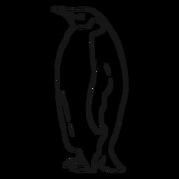 Pinguinflügelschnabel-Schwanzfettskizze