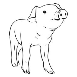 Dibujo de pezuña de hocico de cerdo