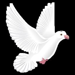 Ilustración de pico de cola de ala de paloma