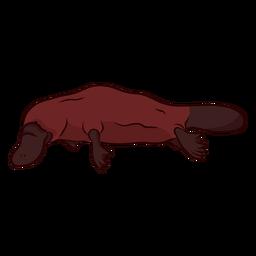 Ilustración de cola de patas de pico de pato platypus