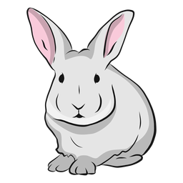 Rabbit muzzle ear illustration