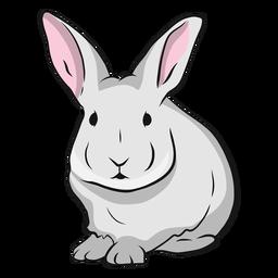 Rabbit muzzle ear illustration
