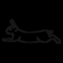 Dibujo de conejo ejecutar