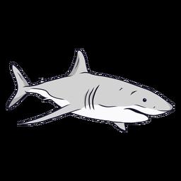 Ilustración de cola de aleta de agallas de tiburón
