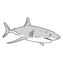 Shark gills fin tail illustration