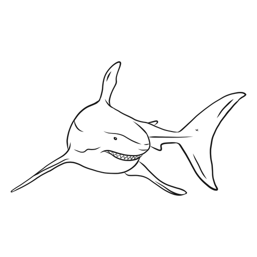 Shark tooth fin tail sketch Transparent PNG