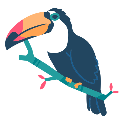 Toucan beak branch flat Transparent PNG